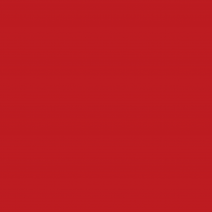 6 BRIGHT RED